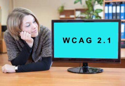 strony internetowe wcag21